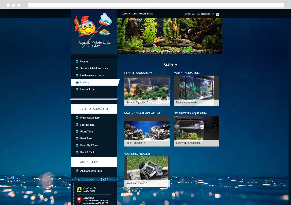 Singapore web design company, website design, website development, web design agency Singapore
