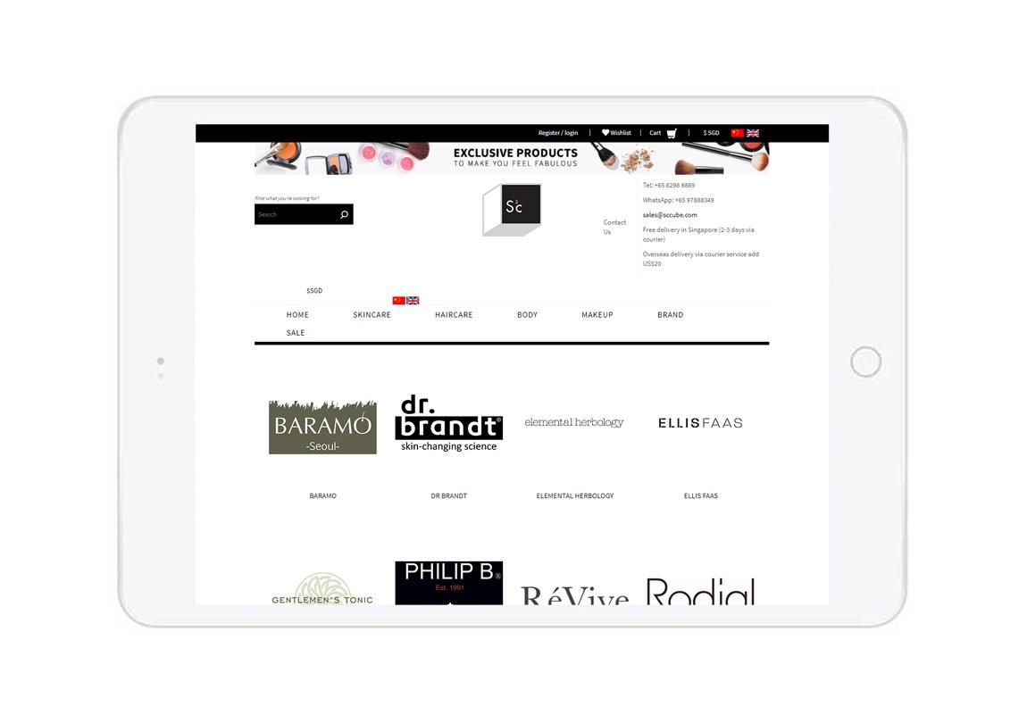 Dual language website, Chinese language ecommerce, ecommerce online store, shopping cart website