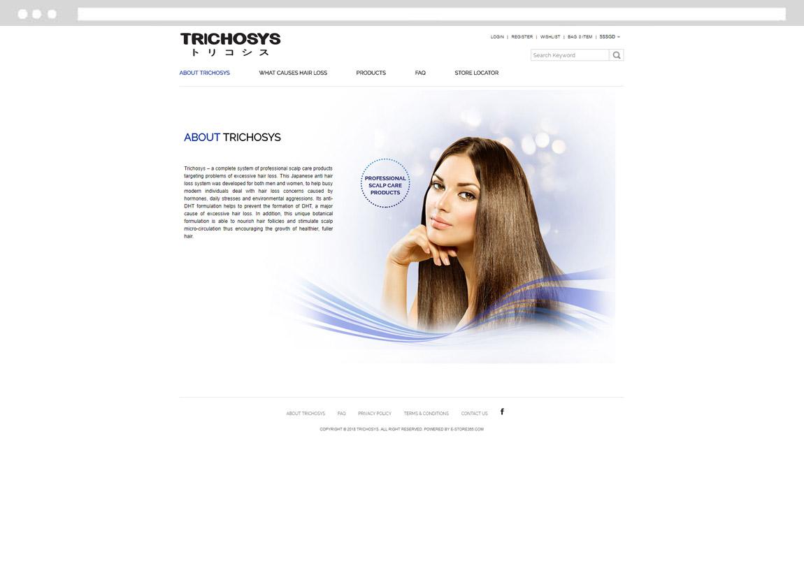 E-commerce Shopping Website Development, Singapore Ecommerce Development Company, Design Develop Website Online Store