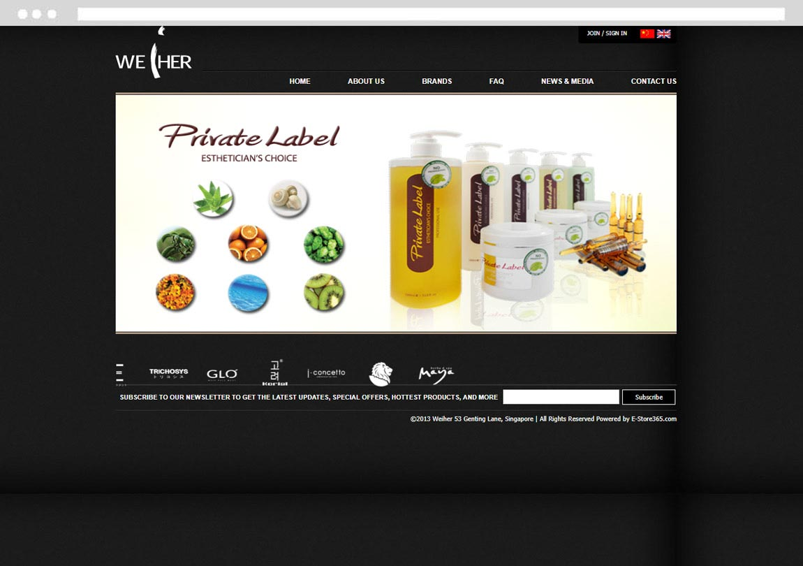 E-Commerce Online Store Development, Singapore Ecommerce Development Company, E-commerce design company